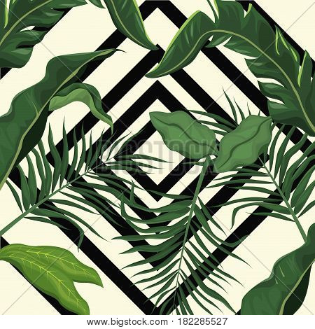 tropical leave palm tree design vector illustration eps 10