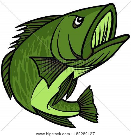A vector illustration of a Bass Fish.