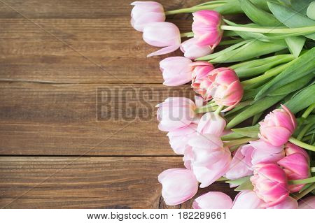 Pink tulips on the wooden background. Pink tulip. Tulips. Flowers. Flower background. Flowers photo concept. Colored tulips. Petals. Holidays photo concept. Copyspace. Peony Tulip