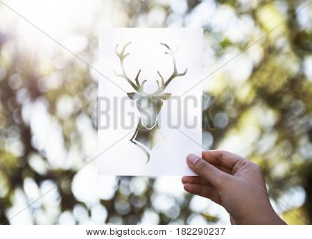Hand Hold Deer with Antlers Paper Carving with Nature Background