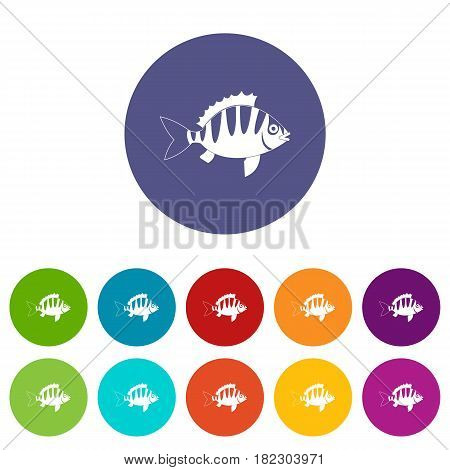 Perch icons set in circle isolated flat vector illustration