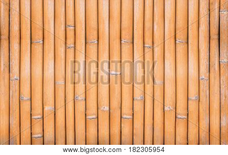 texture of yellow bamboo fence for background