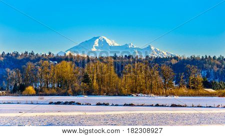 View of Mount Baker in Washington state in the Pacific Northwest of North America seen from Glen Valley in the Fraser Valley of British Columbia, Canada on a cold winter day and snow covered fields