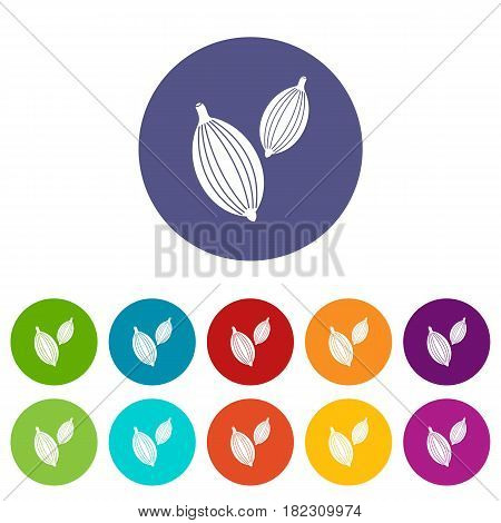 Cardamom pods icons set in circle isolated flat vector illustration