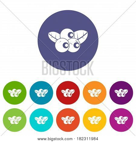 Blackberry fruit icons set in circle isolated flat vector illustration