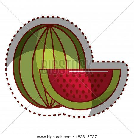 sticker watermelon fruit icon stock, vector illustration design image
