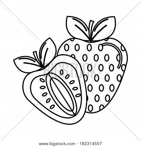 silhouette strawberry fruit icon stock, vector illustration design image