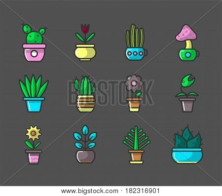 Plants and flowers in pots vector collection of sixteen elements. Vector poster of various types of cactus and blooming flowers with green stems and leaves that grow in houses on windows