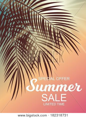Colored Summer Sale Background Vector Illustration EPS10