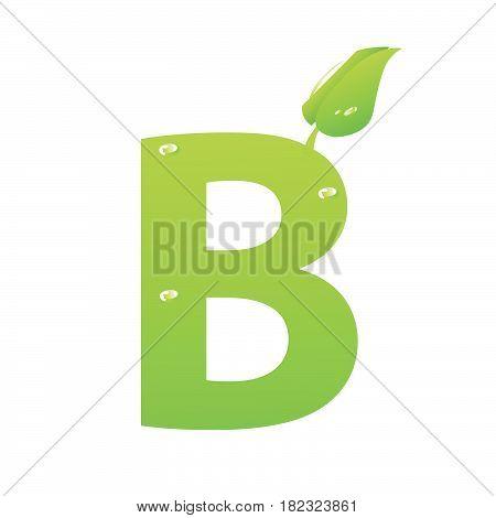 Green eco letter B vector illiustration on white