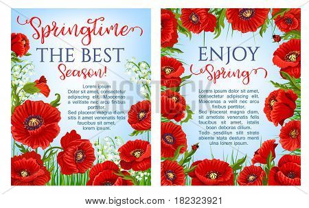 Spring holiday poster vector design with blooming poppy flowers and flourish lily of valley of orchid petals on green grass lawn. Set for springtime season holiday quotes and wishes templates