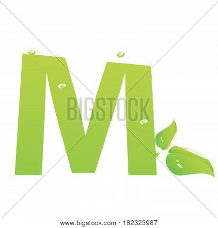 Green eco letter M vector illiustration on white