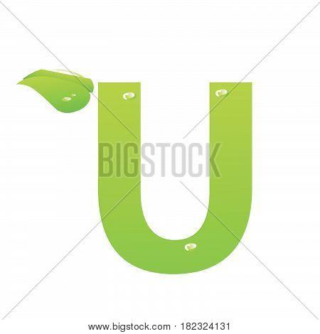 Green eco letter U vector illiustration on white