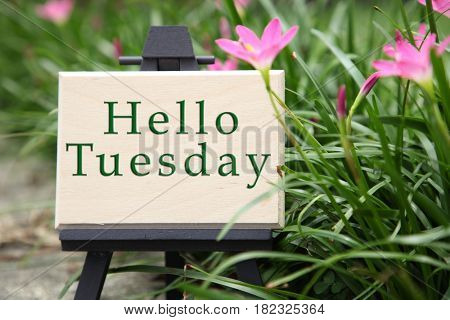 mini message board written hello tuesday