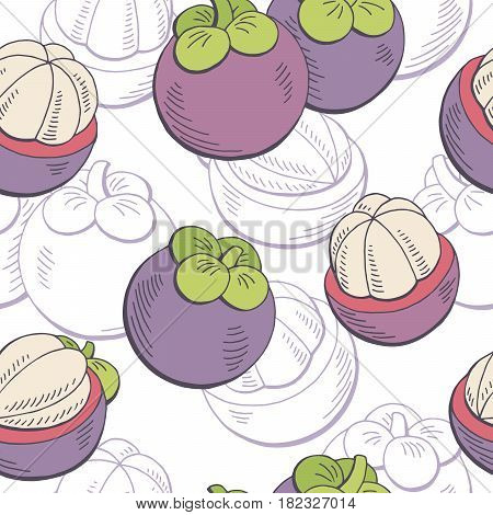Mangosteen fruit graphic color seamless pattern sketch illustration vector