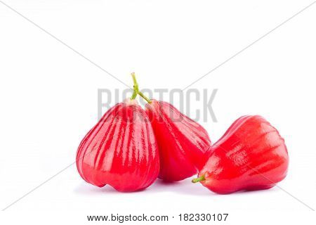 rose apple or chomphu on white background healthy rose apple fruit food isolated