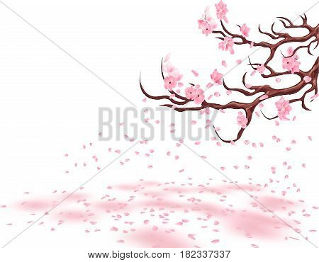 Branches of a fading pink cherry. Sakura. The petals fly in the wind and lie on the ground. Isolated on white background. Vector illustration