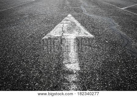 White Arrow Goes Up Over Highway Asphalt