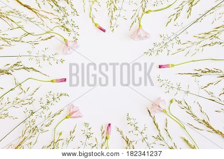 Frame with fresh flowers. Minimal flat design. Place for a replica. The top view.