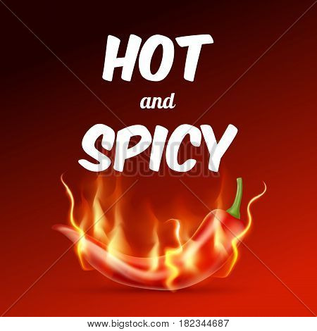 Red hot chili pepper with flame on a red background. Hot and spicy food illustration. Vector illustration. EPS 10