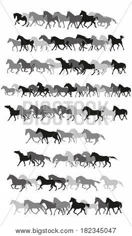 Set of vector horses silouettes in black and grey on white background