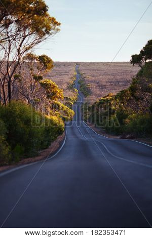 Wavy road in the forest. Sunset time. Flinders Chase National Park, Kangaroo Island, South Australia.
