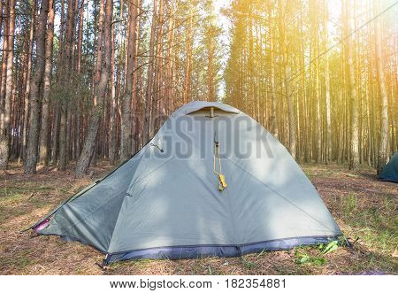 Camping in early morning. Sunny day near beautiful forest.