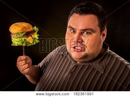 Diet failure of fat man eating fast food hamberger. Aggressive overweight person who spoiled healthy food by eating huge hamburger on fork. Junk meal leads to obesity.