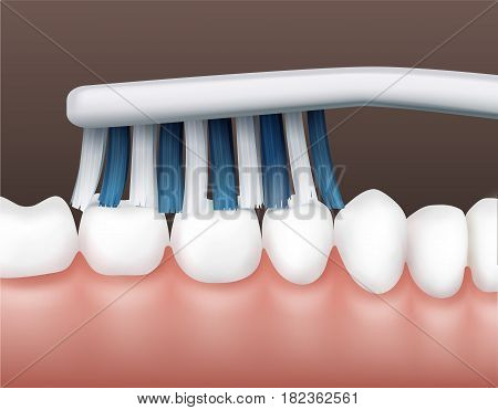 Vector part of human cavity with white clean teeth and striped toothbrush side view