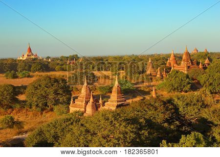 Landscape with Temples in Bagan at sunset, Myanmar (Burma)