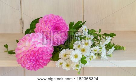 Pretty pink dahlias and white feverfew laying on a shelf.
