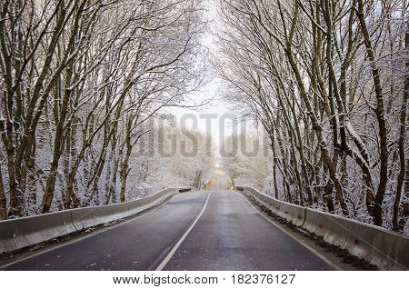 Scenic winter road through icy forest covered in snow after ice storm and snowfall.