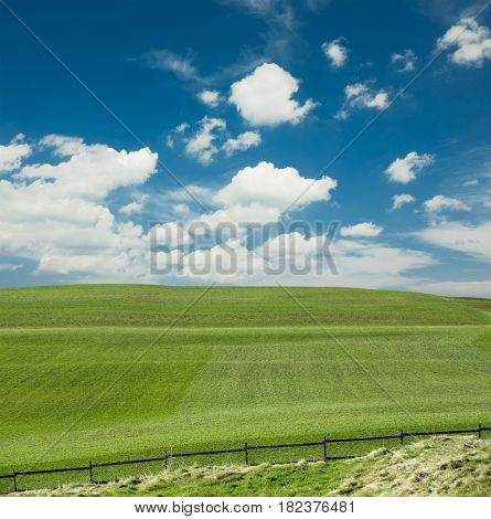 Green grass field and the sky in Switzerland