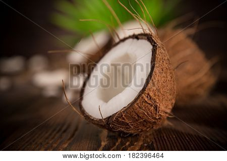 close-up of a coconuts on old wooden background