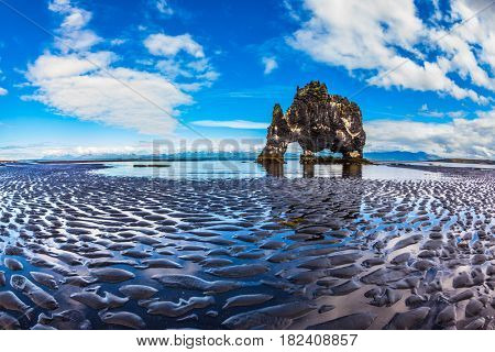 Rock Hvitserkur on the sea beach in the form of a huge elephant. The north coast of Iceland. Ocean tide at sunset. The concept of extreme northern tourism