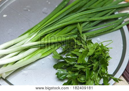 Fresh green onions fresh parsley coriander on the kitchen table close-up