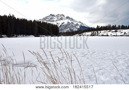 Picture of the North shore of Johnson Lake in Banff National Park, Canada.