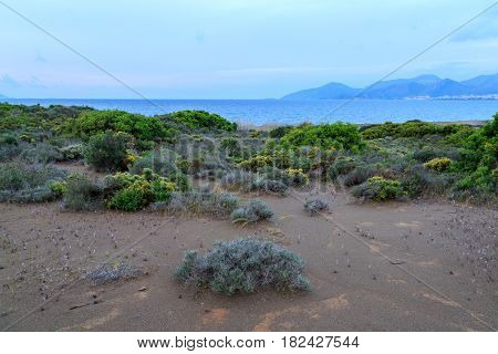 nature natural sand coast landscape blue summer green grass sky hills tide coastline rock park rural peaceful flower pano sun three fluffy countryside view home rustic color sea morning calm beauty cove dawn violet mediterranean climate bush dune greece p