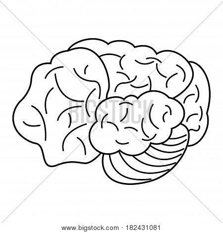 brain organ human outline vector illustration eps 10