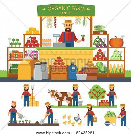 Farming infographic elements. Cultivation of organic products on the farm. Farmer produce shopkeeper. Fresh fruits and vegetables, retail business owner working in his store. Vector flat design