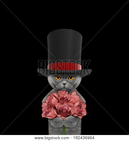 Cat in a high hat cylinder with roses -- isolated on black