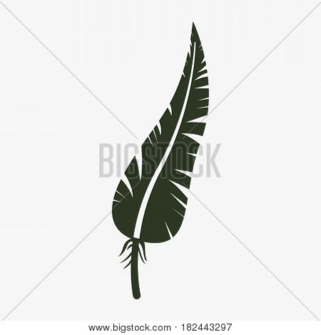 Feather vector icon. Black icon on gray backround.
