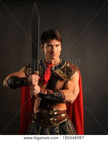 The handsome king is confidently holding his sword.