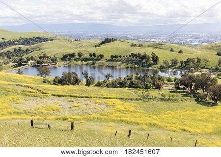 Sandy Wool Lake and Santa Clara Valley at Springtime. Ed R. Levin County Park, Milpitas, Santa Clara County, California, USA.