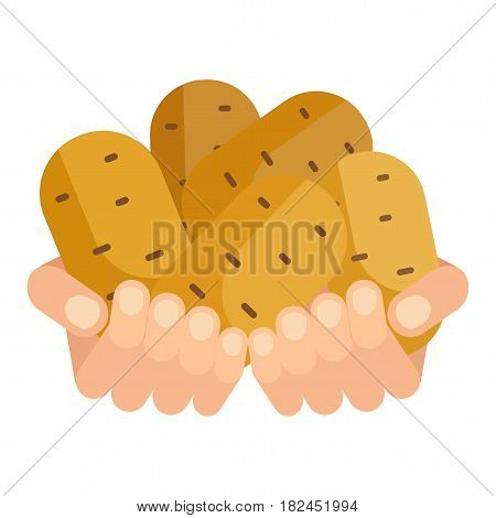 Hands With Potato