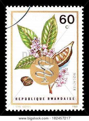 RWANDA - CIRCA 1969 : Cancelled postage stamp printed by Rwanda, that shows  Cola acuminata.