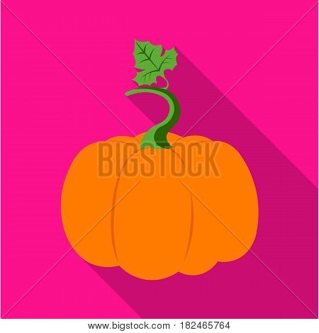 Pumpkin icon flat. Single plant icon from the big farm, garden, agriculture flat.