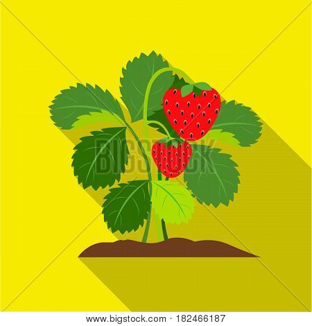Strawberry icon flat. Single plant icon from the big farm, garden, agriculture flat.
