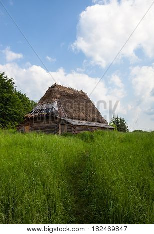 The path in a tall grass to the old wooden shed under the thatched roof.