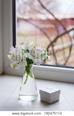 Beautiful tender bouquet of white Alstroemeria in glass vase with white gift box near window. Spring composition. Springtime. Mother`s day card.